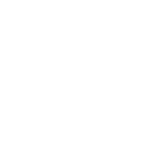 WordPress optimiert